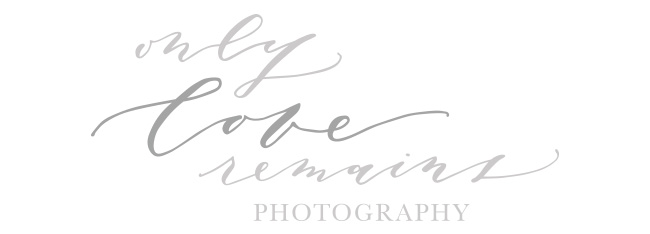 Houston Newborn Photographer | Only Love Remains Photography logo